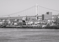 """""""Color of Autumn 2016 In NYC"""" (Monochrome photo of Triboro Bridge and Queens Waterfront taken from Roosevelt Island NYC) (nrhodesphotos(the_eye_of_the_moment)) Tags: dsc0693972 """"theeyeofthemoment21gmailcom"""" """"wwwflickrcomphotostheeyeofthemoment"""" colorofautumn2016innyc shadows reflections autumn season eastriver nyc rooseveltisland triboro robertkennedy bridge queensny astoria waterfront building architecture blackandwite monochrome shoreline metal outdoor blackandwhite water trees plantlife"""
