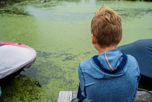Blub, ik ben een vis (2)