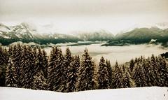 Combloux, lomography, 23 (Patrick.Raymond (3M views)) Tags: haute savoie combloux hivers neige montagne argentique lomography xpro nikon nikonflickraward