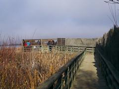 mirador (corbetapalentino) Tags: laguna de la nava