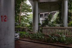 The breakdown (Markus Lehr) Tags: bridge pillars car vegetation urbanspace manmadelandscape china markuslehr