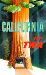 California, Fly TWA! 1950s poster by David Klein (Tom Simpson) Tags: twa poster travel airplane tourism vintage 1950s art transworldairlines painting davidklein redwood sequoia forest tree california nationalpark nationalforest