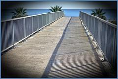 Con vistas al mar (patosincharco) Tags: puente