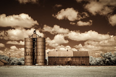 Ramona Co-op (explore) (unknown quantity) Tags: clouds sky railroadtracks trees shadows rust weathered infrared fadedpaint cloudsstormssunsetssunrises field oxidation hss