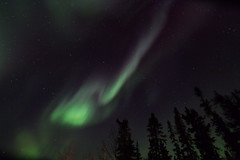 Friday night northern lights (She Likes Odd) Tags: aurora auroraborealis northernlights northernmanitoba thompson manitoba tokina1116mm tokina canon60d canoneos60d canonphotography astrophotography nightsky nightphotography spaceweather october friday