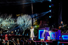 2016.12.01 Christmas Tree Lighting Ceremony, White House, Washington, DC USA 09298-2