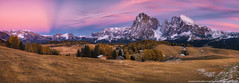 Italy. Dolomites. Panorama plateau Alpe di Siusi after sunset (naumenkophotographer.com.ua) Tags: alpe alpine alps autumn background beautiful beauty di dolomites dolomiti europe green highest hiking italy landscape larch meadow mountain natural nature ortisei outdoor pasture path peak rock sassolungo scenery scenic seuc siusi sky travel tyrol view pentax