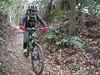 P1050396 (wataru.takei) Tags: mtb lumixg20f17 mountainbike trailride miurapeninsulamountainbikeproject