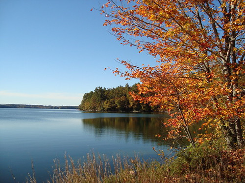 Lake Auburn Fall - J Maloney