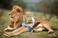 Löwenkönig :-) (Schneeglöckchen-Photographie) Tags: composition buch book king lion löwe composing könig