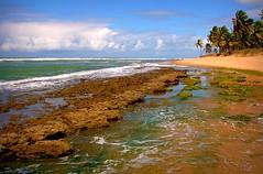 A Paradise (Serlunar (tks for 5.6 million views)) Tags: brazil flickr do fotos bahia salvador premiadas flickrduel worldwidelandscapes thebestofday gününeniyisi natureselegantshots serlunar panoramafotográfico trueheavenisaplaceonearth