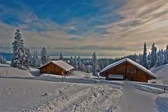 Winter time in Switzerland . A house with  a view of the Alps. No. 3164. (Izakigur) Tags: schnee winter snow mountains alps les alpes landscape liberty schweiz switzerland nc nikon europa europe flickr suisse suiza swiss feel ne jura f 24 neige 28 alpen helvetia nikkor svizzera 70 neuchatel neuchtel lepetitprince ch dieschweiz musictomyeyes sussa suizo chauxdefonds romandie swissromande lachauxdefonds myswitzerland lavuedesalpes lasuisse ttederan   cantondeneuchtel d700 nikond700 nikkor2470f28 izakigur nikon2470f28 nikon2470mmf28g cantonofneuchatel suisia laventuresuisse izakiguralps izakigurjura izakigurd700 izakigur2013 nikkor2470nikkor d700izakigurd700nikond700 svizzeradieschweiz