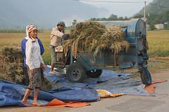 131027_017 (123_456) Tags: mai chau vietname koningaap mauchau