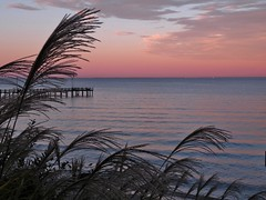 Beautiful view @KWB (BelindaMariepix) Tags: pink blue sunset sky fall beach water colors clouds reflections bay pier shadows seasons view purple branches calvert chesapeakebay portrepublic kwb southernmaryland calvertcounty calvertcountymd portrepublicmaryland googleplus kenwoodbeach belindamarie kenwoodbeachcalvert calvertchesapeakebay belindamariepix belindaphotoshares belindachurch