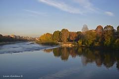 Torino (laura_gio67) Tags: torino nikon italia fiume po autunno nikonclubit