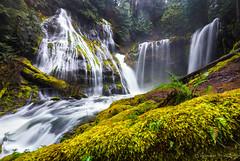 Panther Creek Falls (Bronwyn Illingworth) Tags: creek waterfall washington moss falls columbiariver pacificnorthwest panther columbiarivergorge skamania panthercreekfalls