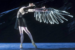 The myths behind the ballets: A quick guide to Sampling the Myth