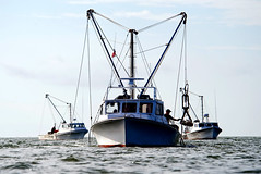 Bay Workboats (StateMaryland) Tags: fish work river landscape bay boat fishing jay harvest southern maritime seafood chesapeake fleming fisheries workboat