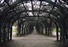 Trellis arches (mariathetwelfth) Tags: history nature architecture canon october russia moscow heights wuthering krasnogorsk canoneos400d canonefs1855mm3556 arkhangelskoyeestate