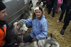 Musher Mania 2014 (Forest Preserve District of Will County) Tags: county winter dog forest district reservoir will musher mushing sled preserve mania monee