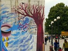 Cuando no haya árboles què haremos con el cemento? (Felipe Smides) Tags: streetart mural pintura valdivia muralismo smides felipesmides