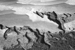 Winter Beach (peterkelly) Tags: bw snow ontario canada detail texture ice beach digital sand pattern snowdrift greatlakes northamerica lakehuron drift grandbend