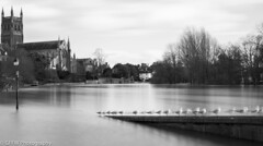 Black and White flood water (GFFW PHOTOGRAPHY) Tags: longexposure blackandwhite seagulls water river flooding cathedral flood smooth severn worcestershire bandw floods worcester 2014 10stop bigstopper