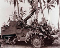 "Marines with 75mm gun pushing up to front on Bougainville • <a style=""font-size:0.8em;"" href=""http://www.flickr.com/photos/81723459@N04/13892275120/"" target=""_blank"">View on Flickr</a>"