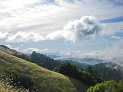 IMG_3712 (_aaaron) Tags: ocean california landscape cycling pacific marin bolinas bayarea sfbayarea ridgecrest roadscape