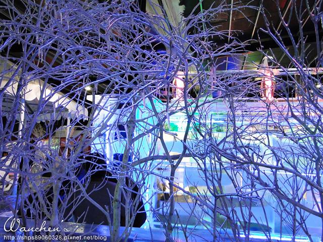 DSC 2014急凍樂園06526