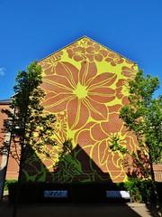 Michael Lin / Pierre De Geyterstraat - 13 juni 2015 (Ferdinand 'Ferre' Feys) Tags: streetart graffiti belgium belgique belgië urbanart graff ghent gent gand graffitiart michaellin arteurbano artdelarue urbanarte
