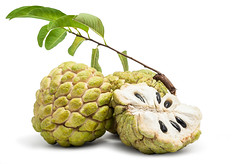 Sweetsop (vinyard35) Tags: agricultural agriculture apple asia asian branch closeup crop custard delicious dessert edible fruit isolate leaf natural nature nutriment nutrition nutritious pare peel plant produce pulp raw ripe seed stem sweet tasty