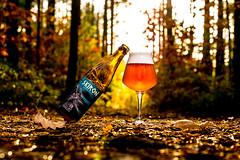 DSC_2680 (vermut22) Tags: beer butelka browar bottle beerme beertime brewery beers birra biere piwo