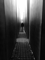 Grey to Black (Lindsay Shanley) Tags: jew holocaust explore dream discover black white gray grey blackandwhite contrast greyscale grayscale monochrome berlin germany berliner alemania jewish memorial holocaustmemorial museum