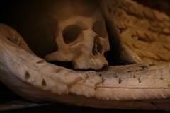 a laisse de marbre... (Pi-F) Tags: cocathdrale saintjean tombe chevalier malte marbre statue autel chapelle tte crane squelette mort allgorie