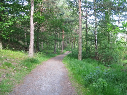 Trail to Runhällsgatan and Trolldalen in Göteborg, 2012 (15)