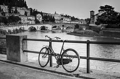 Sola - Alone (Immacolata Giordano) Tags: verona veneto italia italy pontepietra bicicletta bici nikond7000 fiume river adige