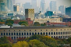 Boston Skyline (catherinehodges) Tags: boston architecture cambridge harvard skyline city cityscape buildings trees urban daytime colors