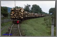 Ukraine 93_118aa (r_walther) Tags: güterzug holztransport schmalspur lok1630 theresiental tu7 waldbahn zakarpattia ukraine ukr