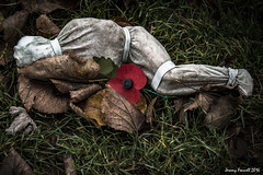Eternal Sleep (zolaczakl ( 2.5 million views, thanks everyone)) Tags: bristol shroudsofthesomme artgallery art robheard photographybyjeremyfennell nikond7100 nikonafsnikkor24120mmf4gedvrlens collegegreen grass leaves poppy remembrance uk england southwest