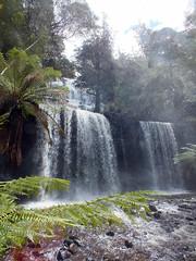 Falling water (LeelooDallas) Tags: australia tasmania mount field national park russell falls landscape dana iwachow fuji finepix hs20 exr water waterfall tree forest
