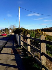 Sunshine and shadows (Explored) (JulieK (finally moved to Wexford)) Tags: 2016onephotoeachday iphone5 irish ireland wexford wellingtonbridge telegraphpole gorse htt fence hff