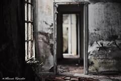 IMG_3740 (ghostm68) Tags: samyang light window finestra manziana cava fornace room stanza abbandonato rudere vecchio