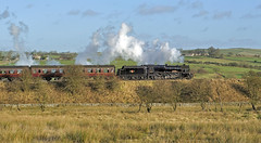 rails no more (midcheshireman) Tags: steam staffordshire train locomotive railway churnetvalley class5 44767