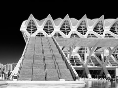 City of Sciences 5 (FloBue) Tags: 2016 valencia spagna spain spanien cityofsciences architettura architektur architecture blackandwhite biancoenero schwarzweiss blacksky highcontrast contrastoalto konstrast olympus silverefexpro lightscae