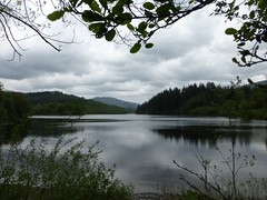 Loch Ard (luckypenguin) Tags: scotland glasgow aberfoyle kinlochard trossachs lochard ramblers walk walking stirling