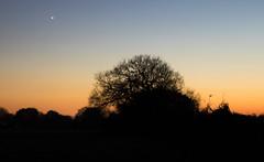 Sundown (The Crewe Chronicler) Tags: sunset sundown crewe cheshire canon canon7dmarkii tamron