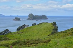 Pride Rock (louisparmar) Tags: nikon d5200 kitlens landscape cathedralcove nz newzealand northisland