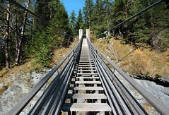 IMG_1438 (trevor.patt) Tags: conzett cbg pedestrian suspension bridge hiking trail viaspluga viamala graubunden ch infrastructure architecture