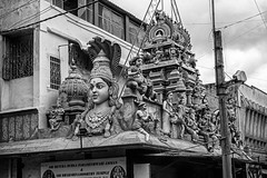 The Goddess, Gods and Snake Charmers, All Jostle For Space (Anoop Negi) Tags: bangalore india karnataka veerapillai street black white bnw monochrome temple architecture sculpture urban mix jostling capture anoop negi ezee123 photo photography commercial
